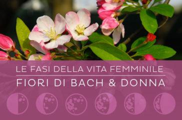I Fiori di Bach per le fasi della vita della donna