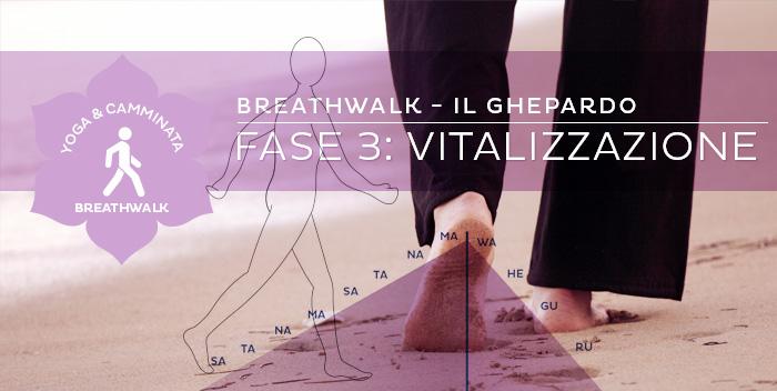 Breathwalk: il Ghepardo – Fase 3: Vitalizzazione